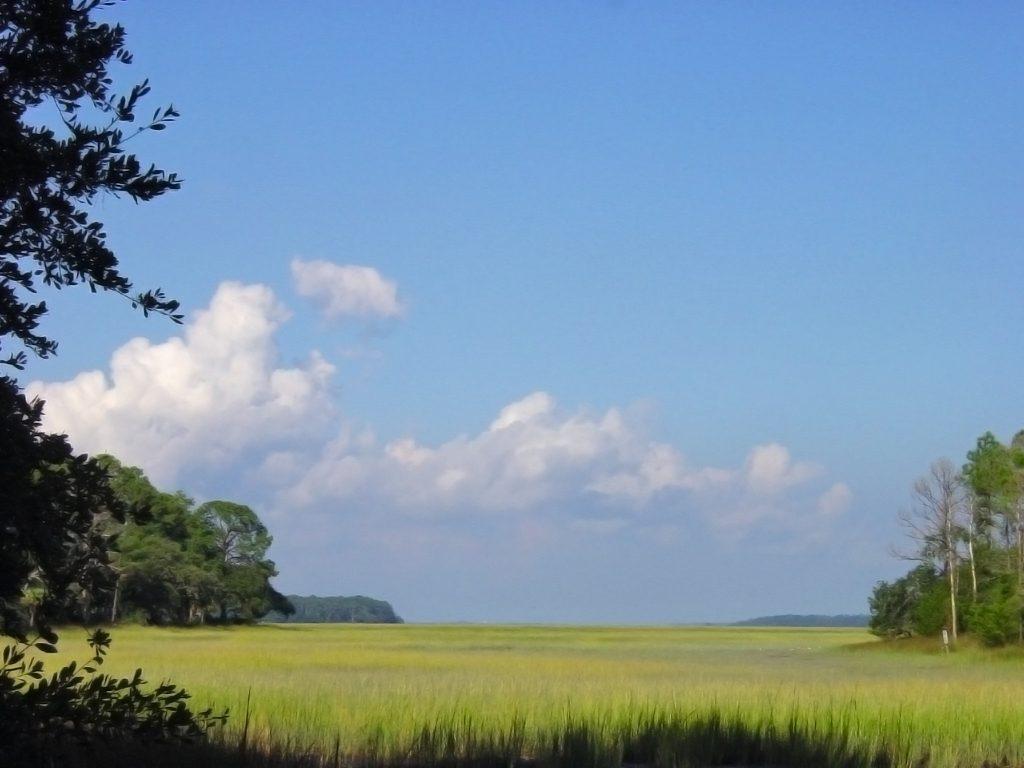 Marsh view at Belfair
