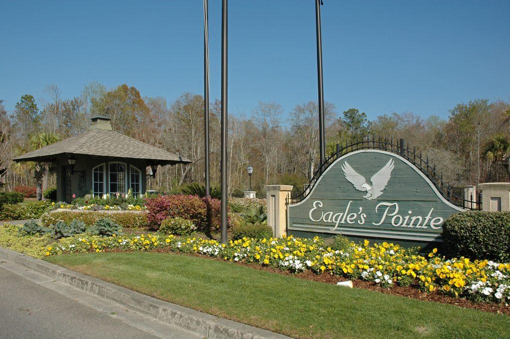 Eagle's Pointe real estate