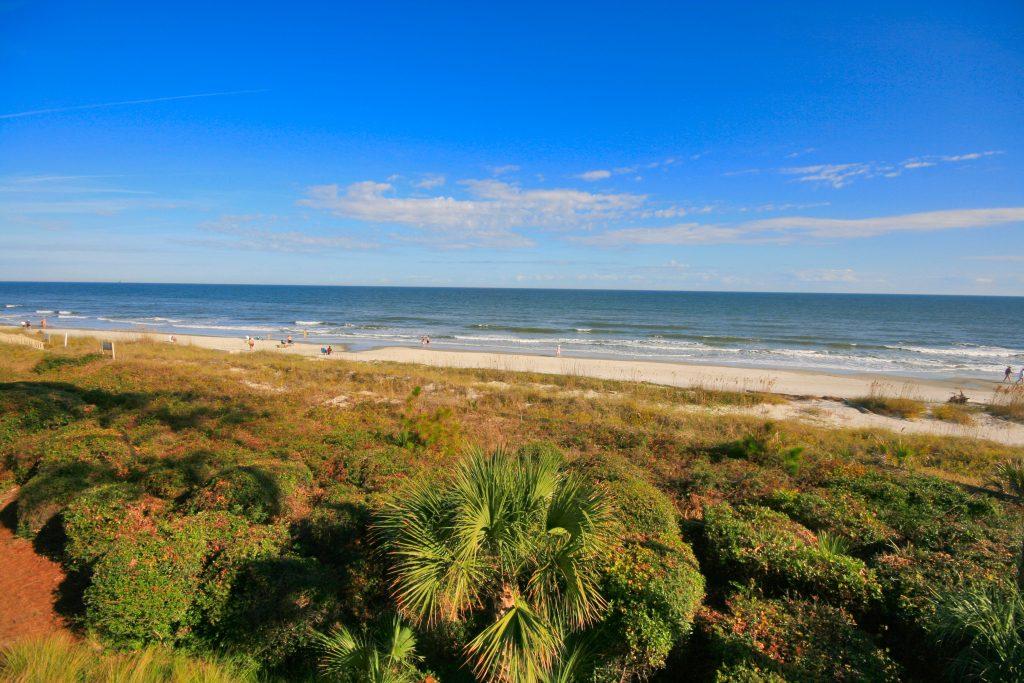 Palmetto Dunes real estate